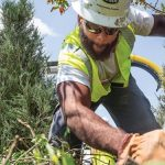 Brandon Bradley of Intren clears brush and plant roots near Midway Airport. Bradley is a graduate of Construct, a training program offered by Commonwealth Edison. Photo by Manuel Martinez, Crain's Chicago Business